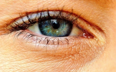 فناوری جدید گوگل که بیماریهای قلبی را از طریق اسکن چشم تشخیص میدهد